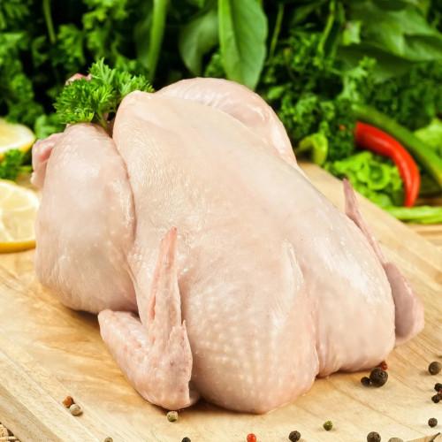 Курица, бройлер